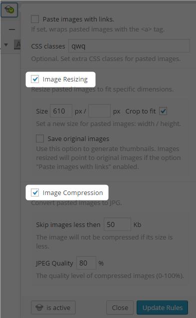 OnePress Image Elevator有料版設定画面